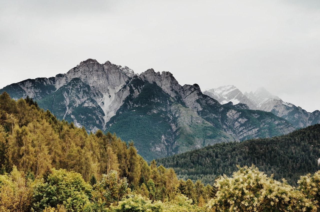 green-trees-near-mountain-pat-obrien-ventures